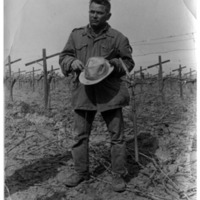 Field Worker, grape vines.pdf